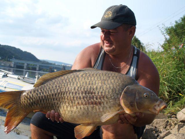 Detail fotografie - Kapr, Boilies Boss2 - Chobotnice, 10,3 kg, Ústecký kraj